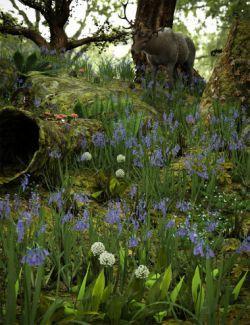 Wild Flowers Vol 5- Woodland Plants