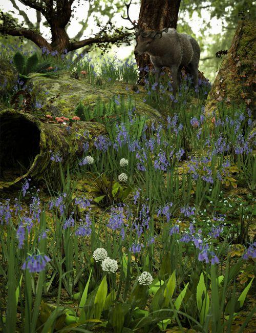 Wild Flowers Vol 5 - Woodland Plants