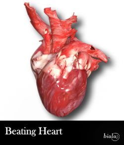 Beating Heart - Extended License