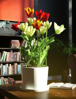 Garden Flowers Vol 2. Tulip Plants