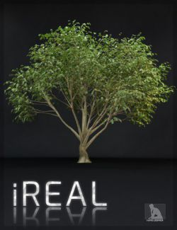 iREAL Animated Hybrid Tree