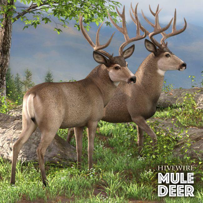 HiveWire Mule Deer Buck