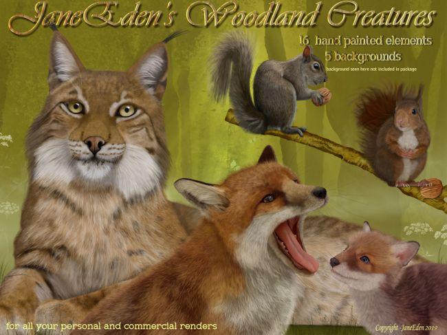 JaneEden's Woodland Creatures