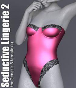 Seductive Lingerie 2
