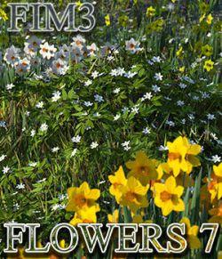 Flinks Instant Meadow 3 - Flowers 7