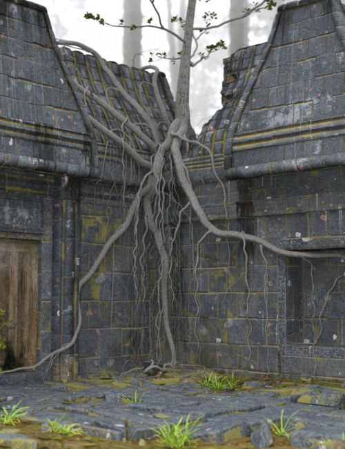 Abandoned Temple Courtyard