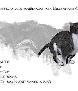 Animations and aniBlocks for Millennium Cat 2