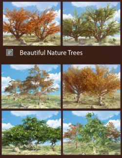 Beautiful Nature Trees