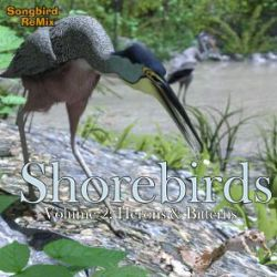 SBRM Shorebirds Vol 2- Herons & Bitterns