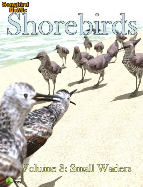 SBRM Shorebirds Vol 3 - Small Waders