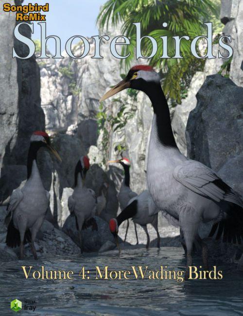 SBRM Shorebirds Vol 4 - More Wading Birds