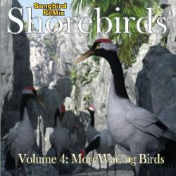 SBRM Shorebirds Vol 4- More Wading Birds