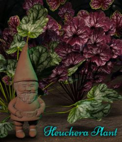 Heuchera Plant For Daz Studio Iray
