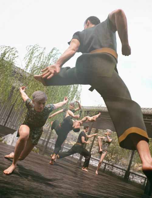 Crane Form Kung-Fu Poses