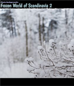 Photo Backgrounds: Frozen World of Scandinavia 2