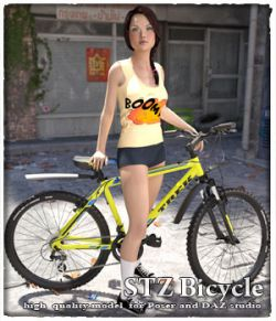 STZ Bicycle