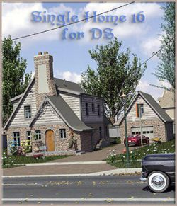 Single Home 16 for DS