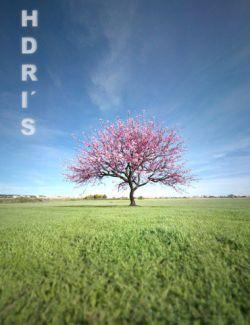 HDRI Green Fields I