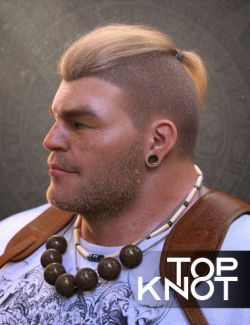 Top Knot Hair and Beard for Genesis 3 and 8