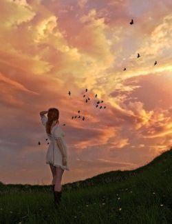 Orestes Iray HDRI Skydomes - Vanilla Evening