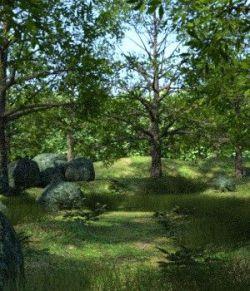 My Grove