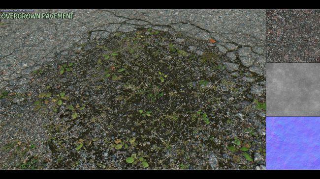 Panoramic Texture Resource: Overgrown Pavement DS IRAY