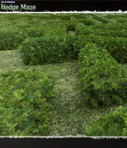 3D Scenery: Hedge Maze