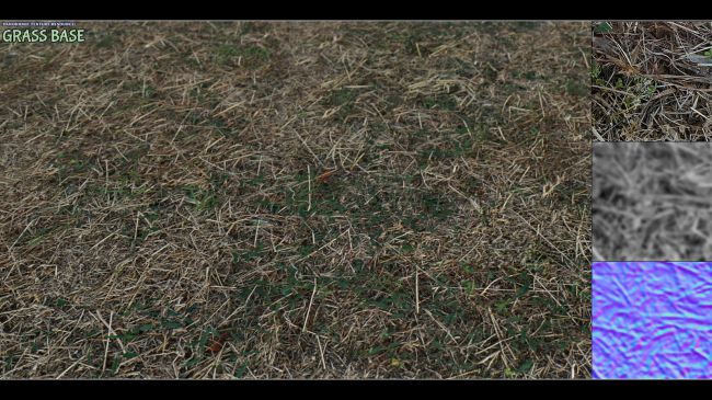 Panoramic Texture Resource: Grass Base