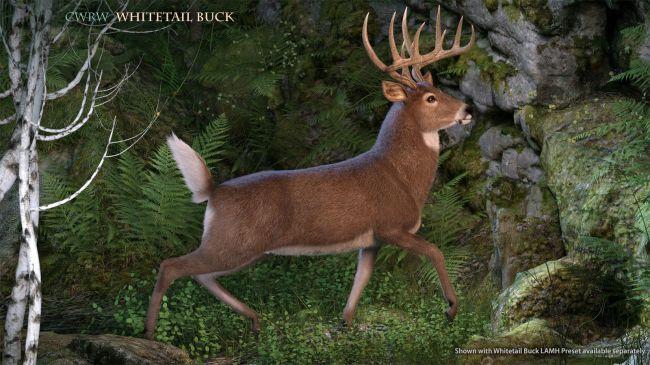 CWRW Whitetail Buck