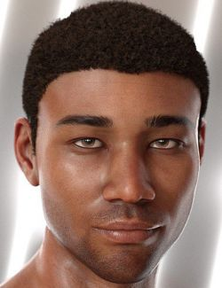 Malik Hair for Genesis 8 and Genesis 3 Male(s)