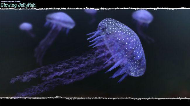 3D Underwater Fauna: Flowing Jellyfish