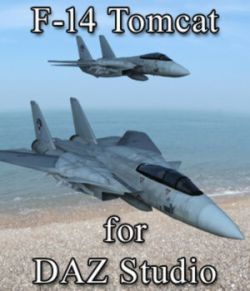F 14 Tomcat for DAZ Studio