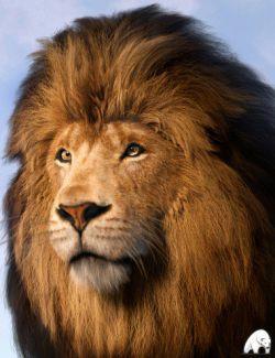 Felidae by AM- Lion