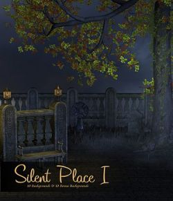 Silent Place I
