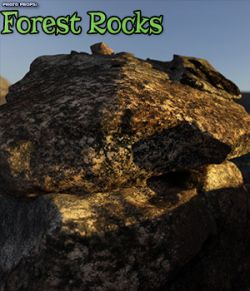 Photo Props: Forest Rocks