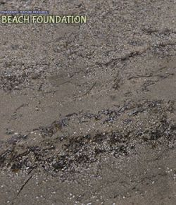 Panoramic Texture Resource: Beach Foundation