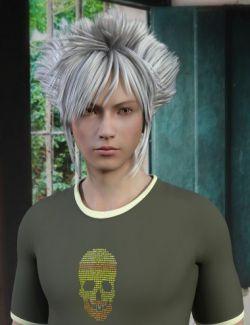 Hiraku Hair for Genesis 8 Male(s)