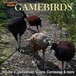 SBRM Gamebirds Vol 2