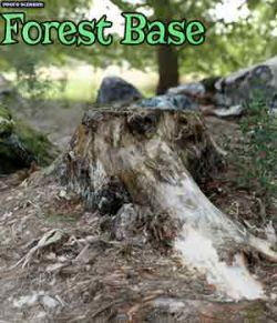 Photo Scenery: Forest Base