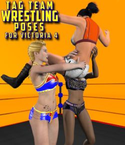 Tag Team Wrestling Poses for V4
