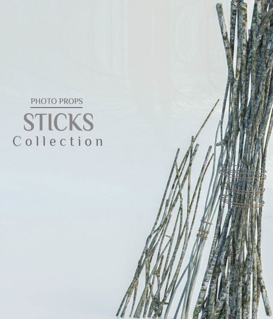 Photo Props: Stick Collection