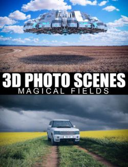 3D Photo Scenes- Magical Fields