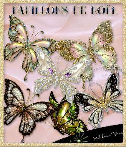Papillons de Nol