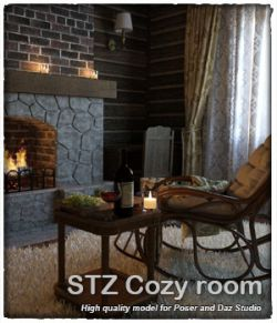 STZ Cozy room