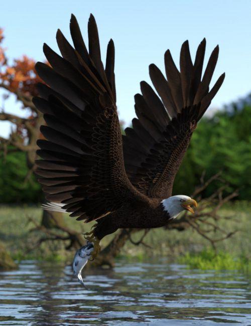 Deepsea's Eagle Poses and Fish