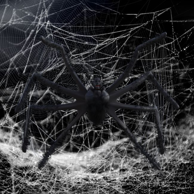Spider for G8M