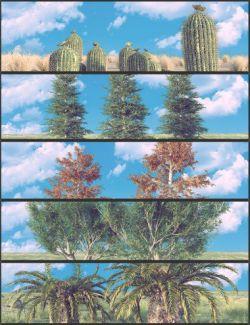 Nature Plants 02