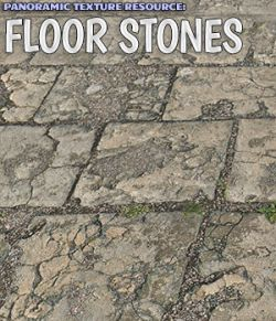 Panoramic Texture Resource: Floor Stones