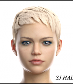 SJ Hair for Genesis 8 Female