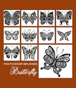 PB - Butterfly